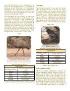 Protocolo de incubación y crianza- Piscilago - Page 7