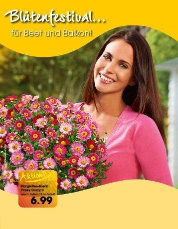 für Beet und Balkon! - Langohr Fachmarkt Mücke