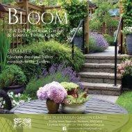 Bloom Summer 2017 Single