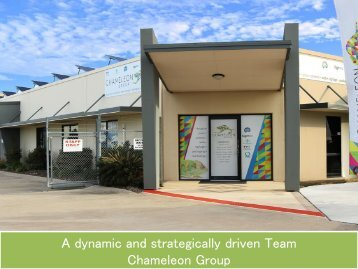 A dynamic and strategically driven Team - Chameleon Group