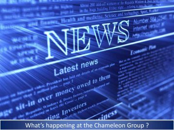 What happening at the Chameleon Group
