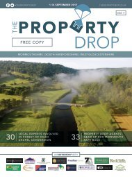 Property Drop Issue 11