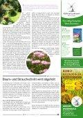 Blickpunkt Ostrhauderfehn Nr. 58 - Seite 7