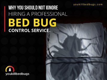 Why Hire a Professional Bed Bug Control Service in Calgary Alberta