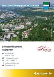 Berufsorientierungskarten -  Ausbildungsplätze in Thalheim bei Wels