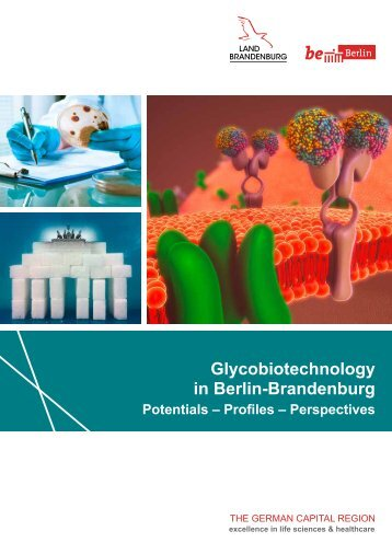 Glycobiotechnology in Berlin-Brandenburg
