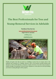 The Best Professionals for Tree and Stump Removal Services in Adelaide