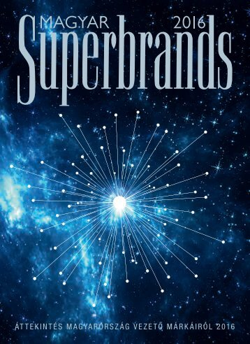 Superbrands Hungary Volume 13