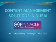 Content Management System Dubai (Pinnacle)