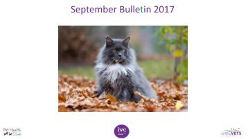 Sept Staff bulletin
