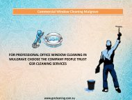 Commercial Window Cleaning Mulgrave