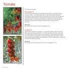Brochure Tomato Romania 2017 - Page 4
