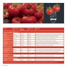 Brochure Tomato Romania 2017 - Page 6