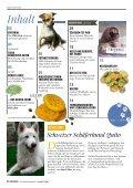 Plätzchen - das Kundenmagazin von dog & dino, Ausgabe 2, 2017 - Seite 2