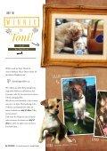 Plätzchen - das Kundenmagazin von dog & dino, Ausgabe 2, 2017 - Seite 6