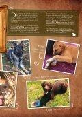 Plätzchen - das Kundenmagazin von dog & dino, Ausgabe 2, 2017 - Seite 7
