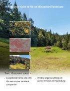 8854 Mill Creek Road brochure  - Page 6