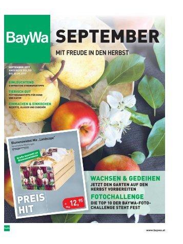 Zeitung September