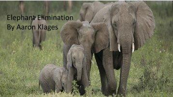 Elephant Elimination