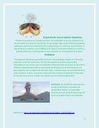 Fenomenos Naturales - Page 7