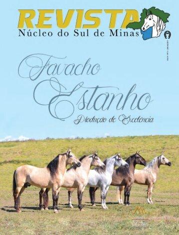 Revista Sul de Minas net
