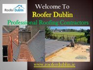 Restoration Re-Roof Repairing Service,