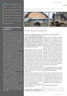 Nib3_17_online - Page 7