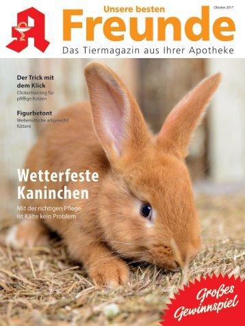 "Leseprobe ""Unsere besten Freunde"" Oktober 2017"