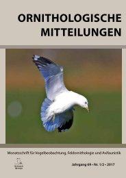 Buch_OrnMitt_1_2_17-Vorschau