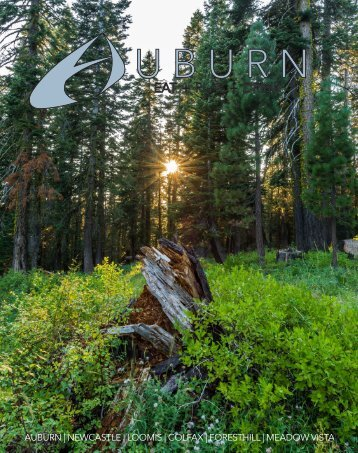 Auburn Magazine Issue #4