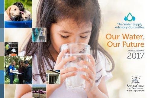 WSAC Annual Report 2017