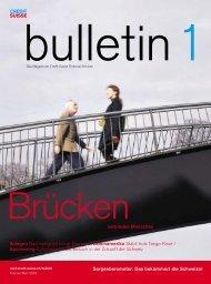bull_02_01_Brücken