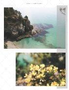 Photography Portfolio (1) - Page 5