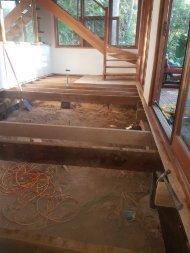 Pest Control & Termite Inspections Sunshine Coast