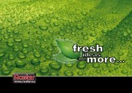 Raster fresh 2013 EN-F