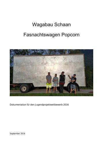 Projektbericht Wagabau Schaan 2016/2017