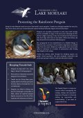 Wilderness Lodges Eco-tourism Initiatives - Page 5
