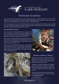 Wilderness Lodges Eco-tourism Initiatives - Page 7