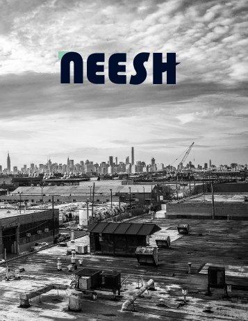 Neesh Magazine No. 1 (Spring 2017)