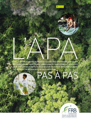 Guide-APA-2017