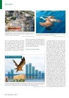 Der Falke - Griffon vultures Croatia - Page 3