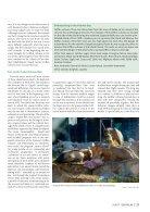 Der Falke - Griffon vultures Croatia - Page 4