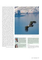 Der Falke - Griffon vultures Croatia - Page 6