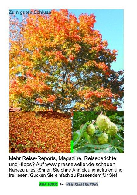 Im Herbstrausch - Der Reisereport