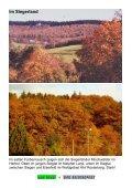 Im Herbstrausch - Der Reisereport - Seite 4