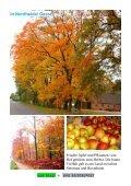 Im Herbstrausch - Der Reisereport - Seite 6