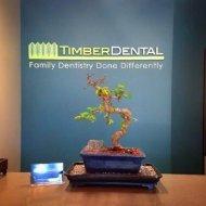 Bonsai tree at Timber Dental Portland, OR 97212