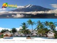 Best Tour Company in Tanzania