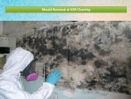 Mould Removal at GSR Cleaning