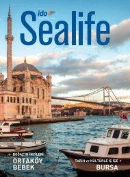 Sealife 43 K